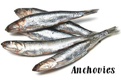 anchovies-lg