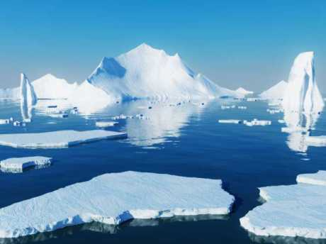 arctic-sea-ice-loss-lets-pacific-sea-life-atlantic_266